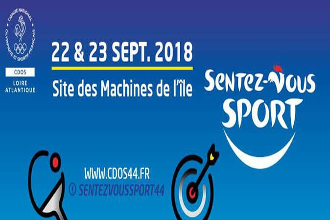 Football : SCO ANGERS / TOULOUSE